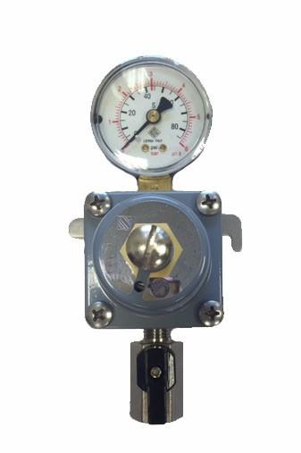 co2 secondary regulator with gauge